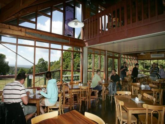 blackwood gully tea room - Victoria Tourism